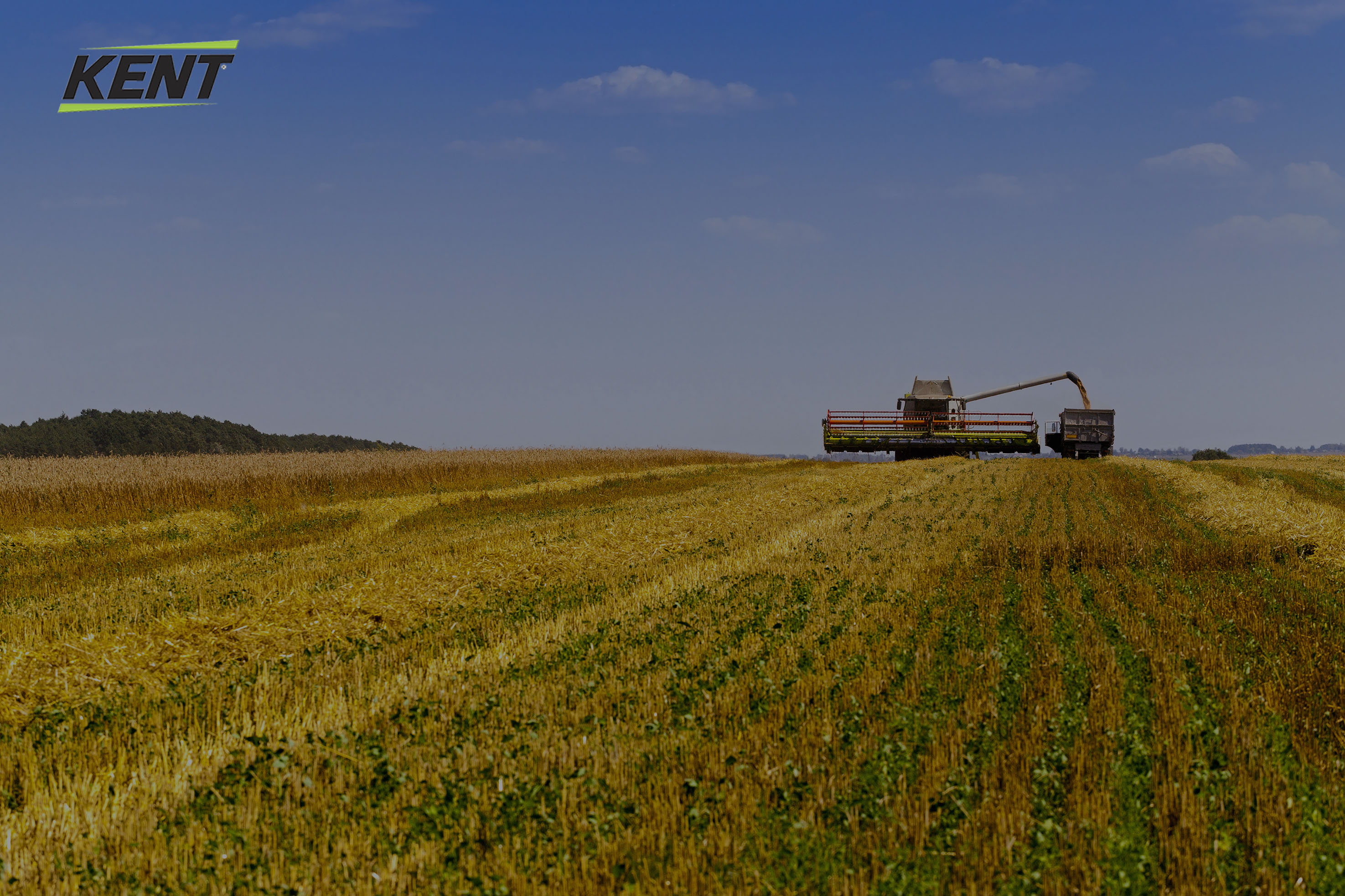 Picture of and with a combine harvester with kent-corp