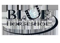 https___i.forbesimg.com_media_lists_companies_blue-horseshoe-solutions_416x416